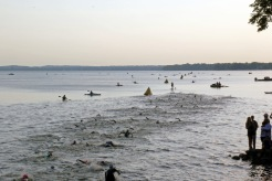 6-swimming